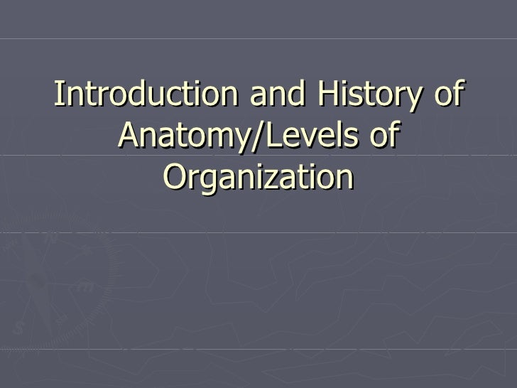Introduction and History of Anatomy/Levels of Organization
