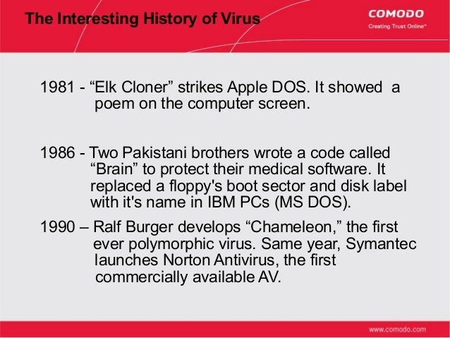 LUS@N Computer Consultancy Service: Learn More About Viruses