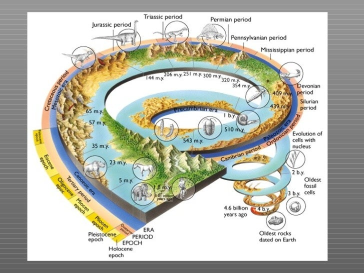 "origin of life on earth A study which is concerned with the development of the early life on earth is ""paleontology"" definition which wikipedia gives to paleontology is ""the scientific study of life that existed."