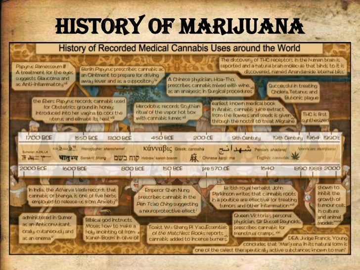 history of medical marijuana essay Find out more about the history of marijuana, including videos, interesting   hemp fiber was used to make clothing, paper, sails and rope, and its seeds   scientists later discovered that thc was the source of marijuana's medicinal  properties.