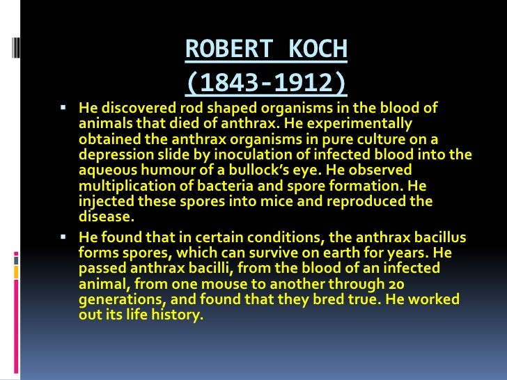 ROBERT KOCH (1843-1912) <br />He discovered rod shaped organisms in the blood of animals that died of anthrax. He experime...