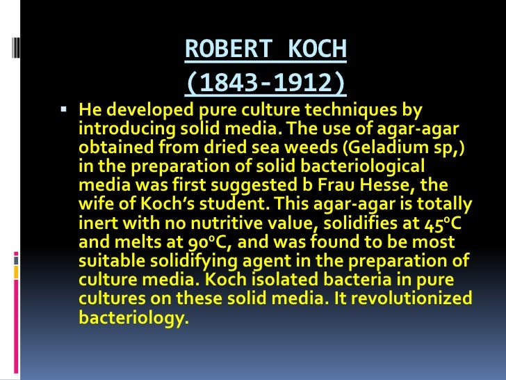 ROBERT KOCH (1843-1912) <br />He developed pure culture techniques by introducing solid media. The use of agar-agar obtain...