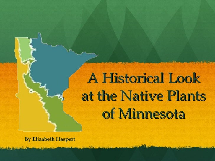 A Historical Look at the Native Plants of Minnesota By Elizabeth Haspert