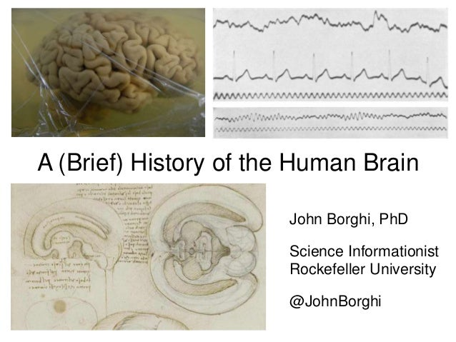 A (Brief) History of the Human Brain John Borghi, PhD Science Informationist Rockefeller University @JohnBorghi