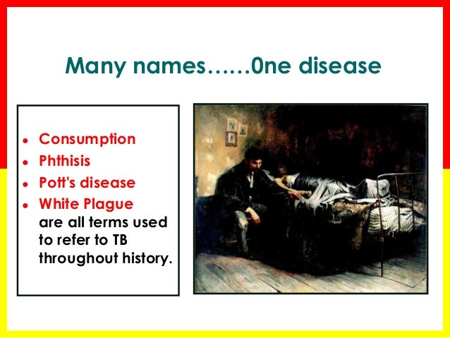 the origin and history of tuberculosis 31 natural history of tuberculosis in animals 11 32 epidemiology of  m  bovis if the milk originated from an m bovis-infected herd the report recognised .