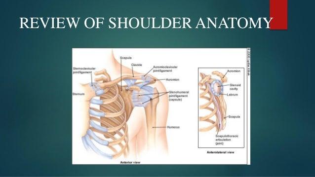 PS SESSION : EXAMINATION OF SHOULDER Slide 2