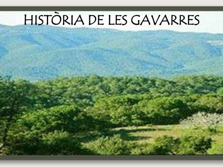 HISTÒRIA DE LES GAVARRES
