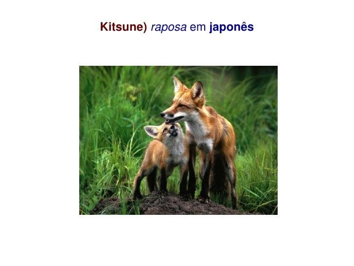 Kitsune) raposa em japonês