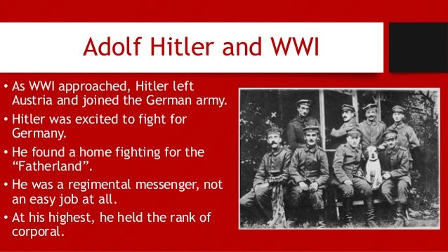 rise of adolf hitler essay Essay on hitler's rise to power germany was in an exceedingly unpleasant state after the wwl the treaty of versailles, to take full blame for the war.