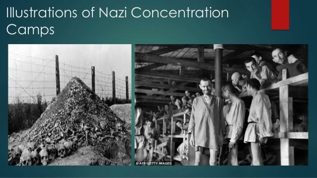 an analysis of the history and characteristics of nazi concentration camps Movie analysis: american history x  and the beatings that people went through in the concentration camps night is a horrible tale of murder and of man's .