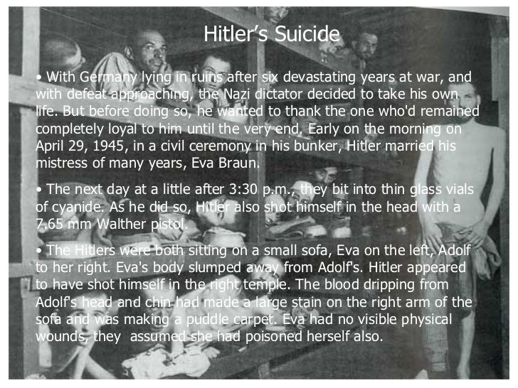 hitlers rise to power At the end of this lesson you should be able to: identify and explain a number of factors that led to the rise of the.