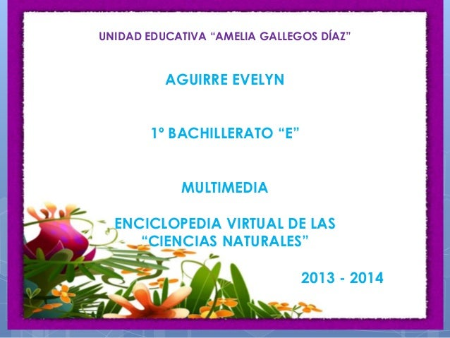 """UNIDAD EDUCATIVA """"AMELIA GALLEGOS DÍAZ"""" AGUIRRE EVELYN 1º BACHILLERATO """"E"""" MULTIMEDIA ENCICLOPEDIA VIRTUAL DE LAS """"CIENCIA..."""
