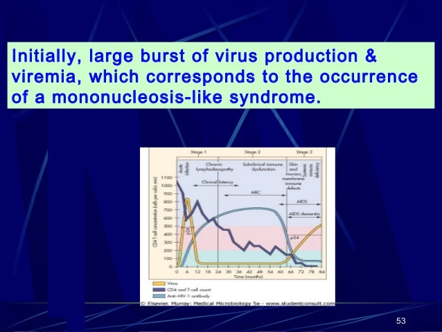 Initially, large burst of virus production & viremia, which corresponds to the occurrence of a mononucleosis-like syndrome...