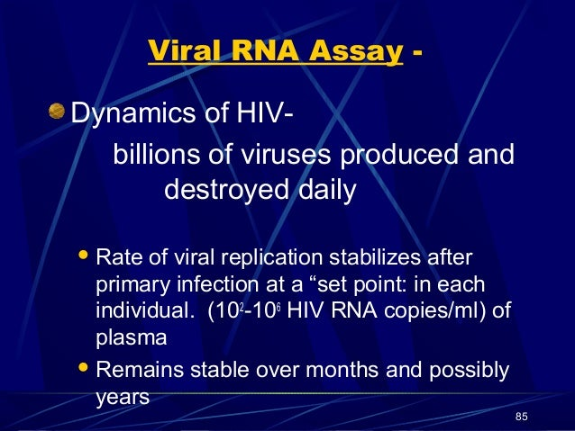 Viral RNA Assay Dynamics of HIVbillions of viruses produced and destroyed daily  Rate  of viral replication stabilizes af...