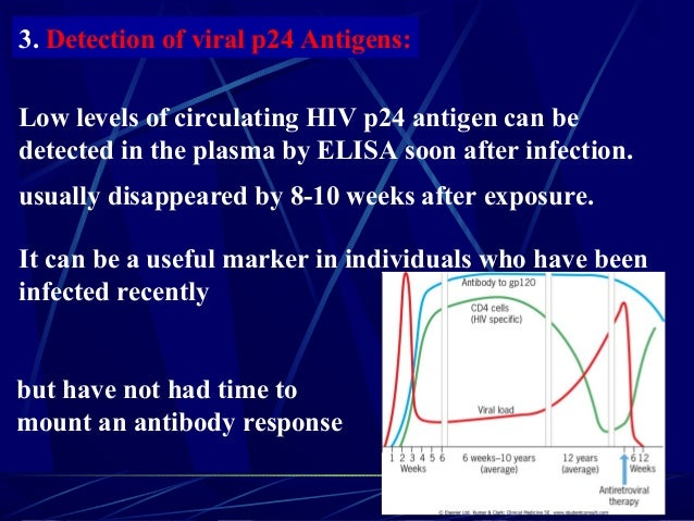 3. Detection of viral p24 Antigens: Low levels of circulating HIV p24 antigen can be detected in the plasma by ELISA soon ...