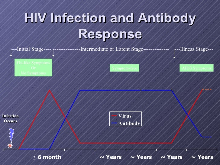 HIV Infection and Antibody Response Infection Occurs AIDS Symptoms ---Initial Stage---- ---------------Intermediate or Lat...