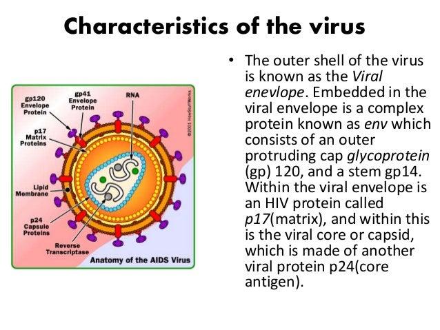 characteristics of gays