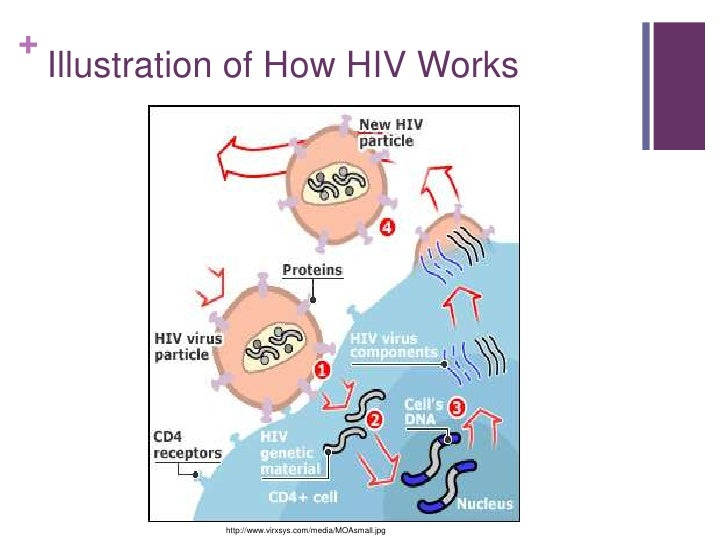 case study of hiv aids patient Medscape general medicine  medgenmed hiv/aids  case files from the bellevue hospital  case patient discussion case resolution  and emtricitabine and ritonavir-boosted atazanavir for hiv .