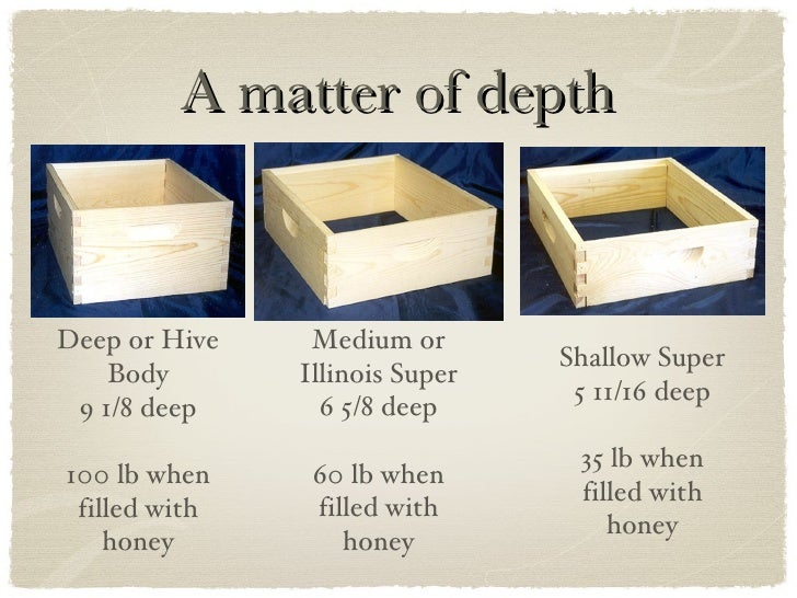 Typical Bee Hive Configuration