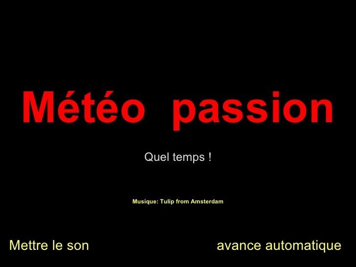 Musique: Tulip from Amsterdam Météo  passion Mettre le son  avance automatique Quel temps !