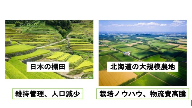 未来農業づくりのすすめ Slide 2