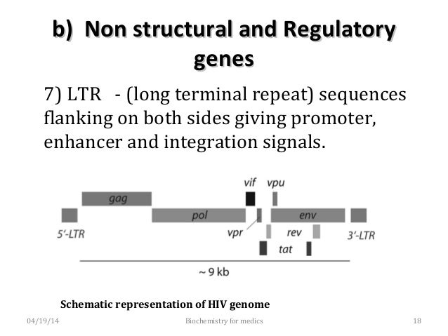 Antigenic variations in HIVAntigenic variations in HIV • Based on molecular and antigenic differences, two types of HIV ha...