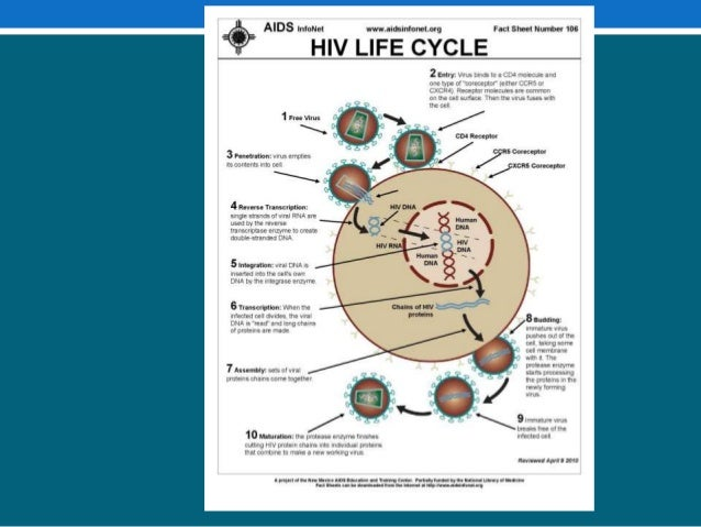 The Social and Health Problems of People Living with HIV/AIDS in Izmir, Turkey