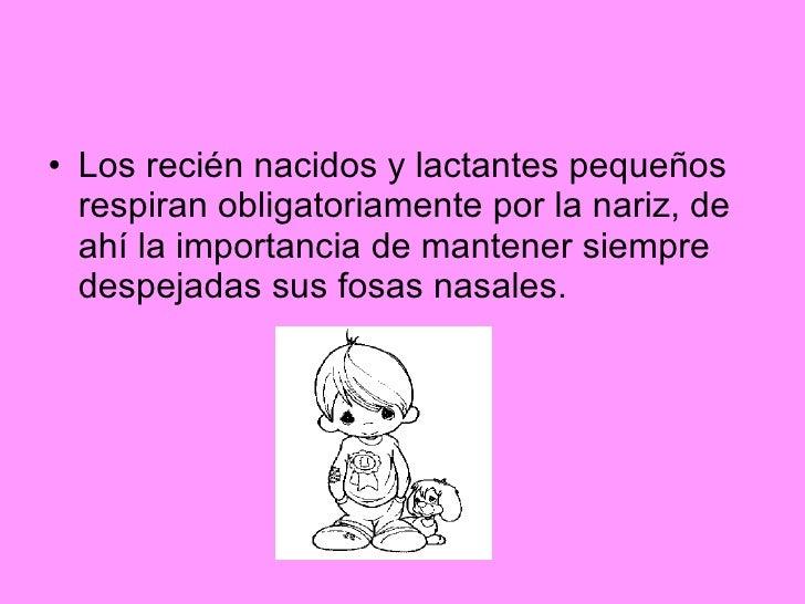 <ul><li>Los recién nacidos y lactantes pequeños respiran obligatoriamente por la nariz, de ahí la importancia de mantener ...