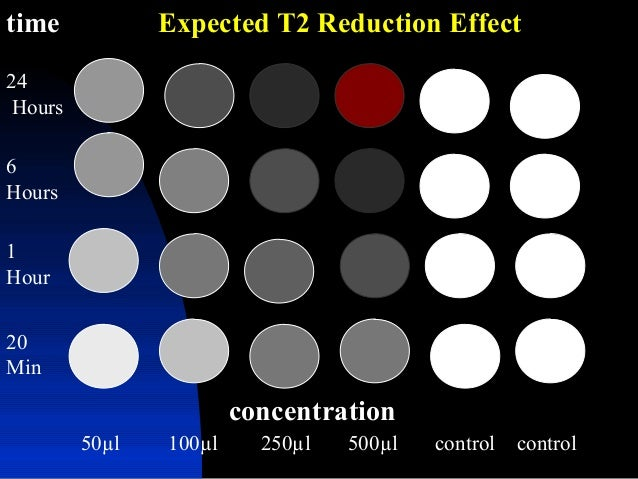 time concentration 20 Min 1 Hour 6 Hours 24 Hours 50µl 100µl 250µl 500µl control control Expected T2 Reduction Effect