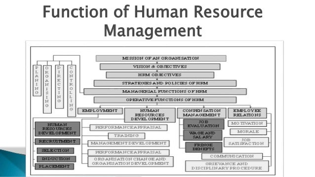 hrm its functions notes 10 most important characteristics of human resource management history of hrm is as old and complex as the history of work and organization hr is the.
