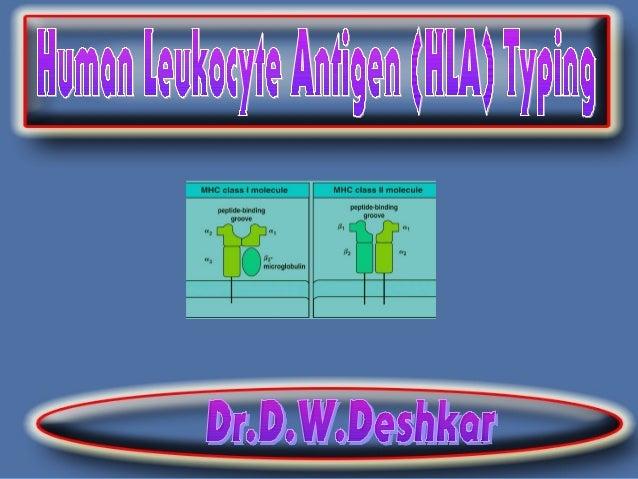 HLA = Human Leucocyte Antigen system History Early work of Gorer (1930) on antigens responsible for allograft rejection ...