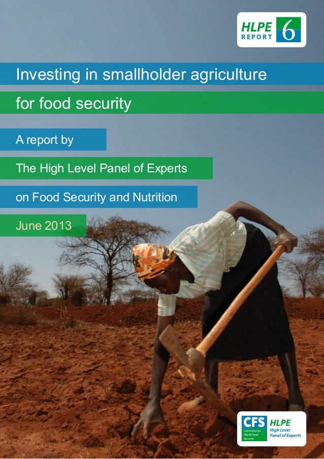 Investing in smallholder agriculturefor food securityA report byThe High Level Panel of Expertson Food Security and Nutrit...
