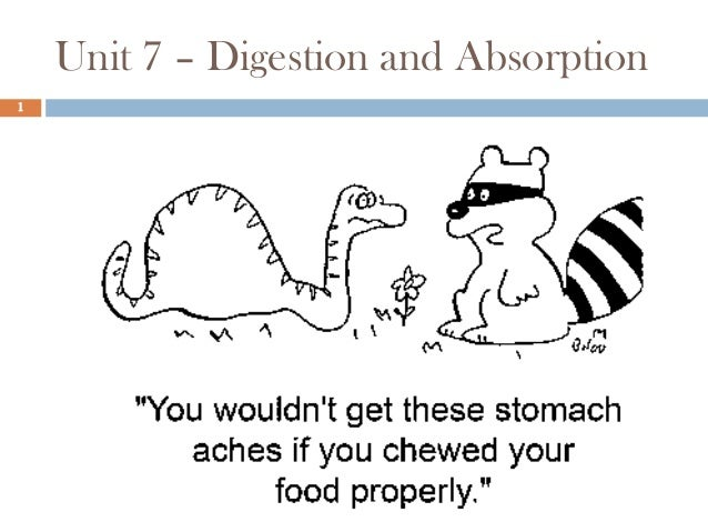 Unit 7 – Digestion and Absorption 1