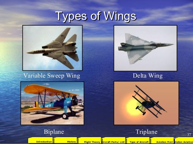Types of WingsTypes of Wings Variable Sweep Wing Delta Wing Biplane Triplane 37 2001Aviation FirstType of AircraftAircraft...