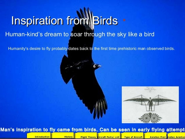 Inspiration from BirdsInspiration from Birds 3 Man's inspiration to fly came from birds. Can be seen in early flying attem...