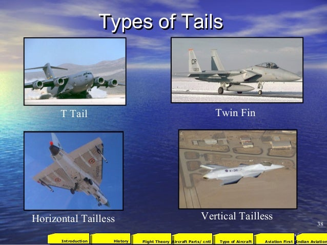 Types of TailsTypes of Tails T Tail Twin Fin Horizontal Tailless Vertical Tailless 38 2001Aviation FirstType of AircraftAi...