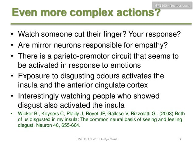 Hmb300 h1f 2013final lecture for Mirror neurons provide a biological basis for