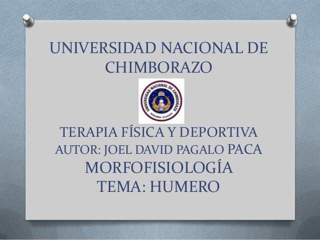 UNIVERSIDAD NACIONAL DECHIMBORAZOTERAPIA FÍSICA Y DEPORTIVAAUTOR: JOEL DAVID PAGALO PACAMORFOFISIOLOGÍATEMA: HUMERO
