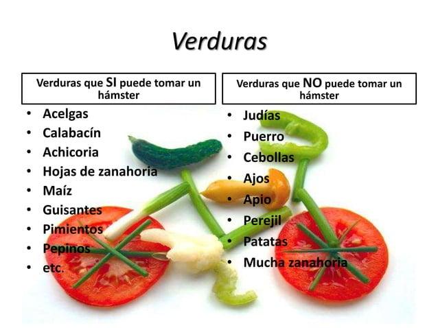 Verduras Verduras que SI puede tomar un hámster • Acelgas • Calabacín • Achicoria • Hojas de zanahoria • Maíz • Guisantes ...