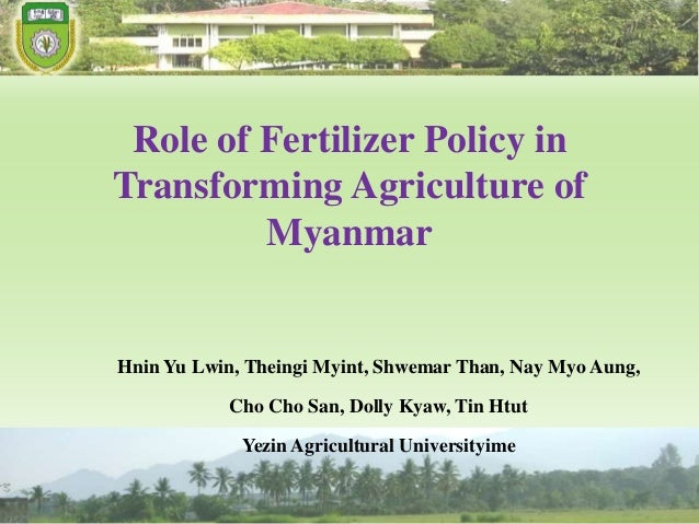 The Fertilizer sector in Myanmar- Hnin Yu Lwin
