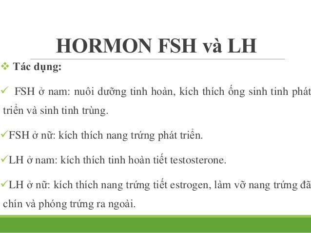 HORMON FSH và LH  Điều hòa:  GnRH Hormon sinh dục nam Hormon sinh dục nữ.