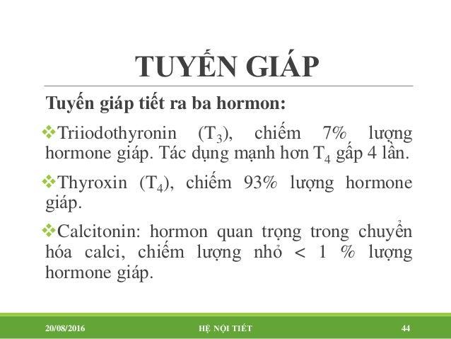 Tác dụng Thyroxine: 93% T4 7% T3 T4  T3 (dạng hoạt động tại tế bào) Phát triển cơ thể, phát triển tinh thần, trí tuệ T...