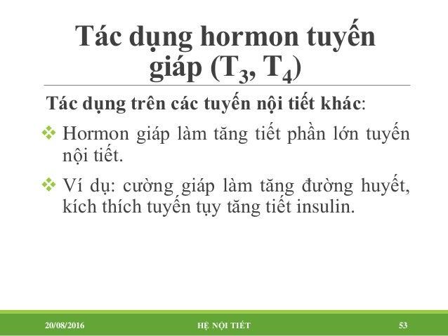 Tác dụng hormon tuyến giáp (T3, T4) 20/08/2016 HỆ NỘI TIẾT 54 Chức năng sinh dục: NAM NỮ Suy giáp  Mất khả năng sinh dục...