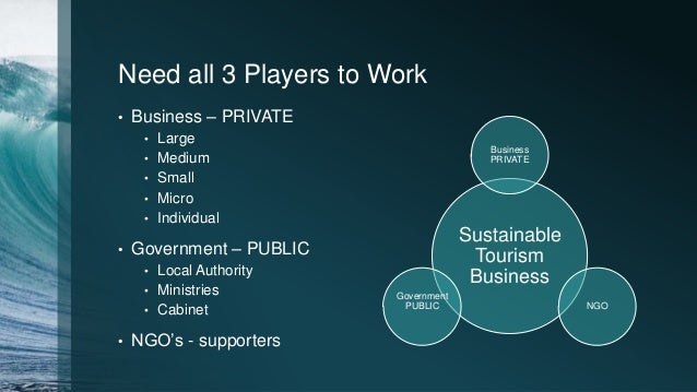 Need all 3 Players to Work • Business – PRIVATE • Large • Medium • Small • Micro • Individual • Government – PUBLIC • Loca...