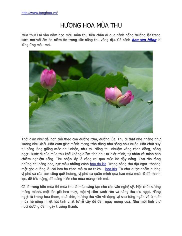 http://www.tanghoa.vn/                         HƢƠNG HOA MÙA THUMùa thu! Lại vào năm học mới, mùa thu tiễn chân ai qua cán...