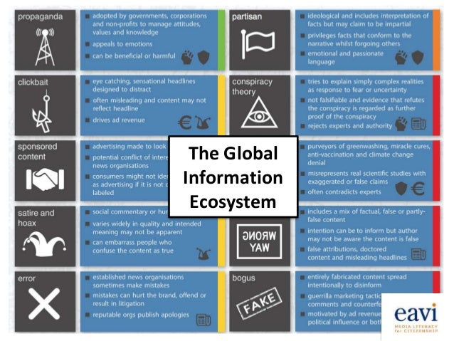 The Global Information Ecosystem