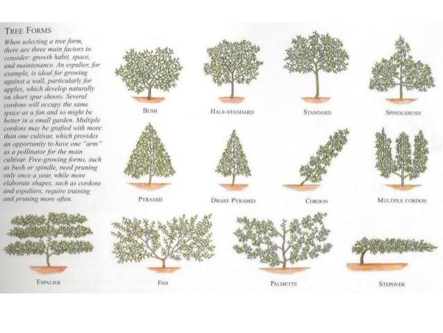 Ho c4 4 pricing landscape maintenance for Garden maintenance work
