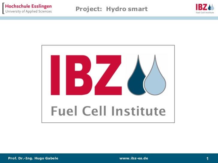 Project: Hydro smartProf. Dr.-Ing. Hugo Gabele               www. ibz-es.de   1