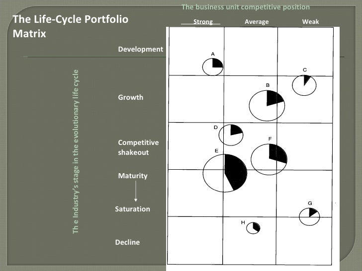 hofer s matrix The short term financial condition and health of the company  thus,  hofer developed the product/market evolution portfolio matrix,.