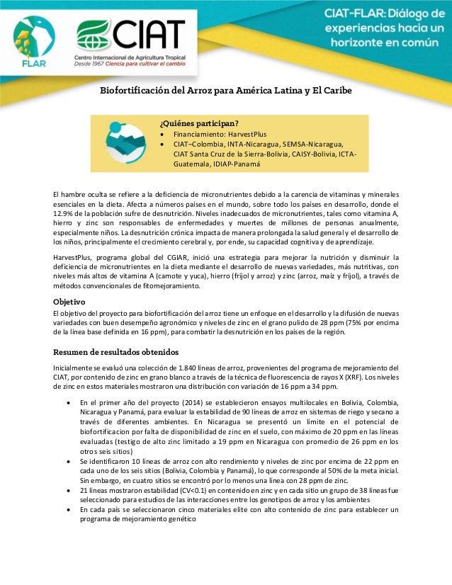 Biofortificación del Arroz para América Latina y El Caribe      Elhambreocultaserefierealadeficienciad...